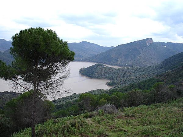 Guadalmellato 20100217 (photo by: Manu Arrabal)