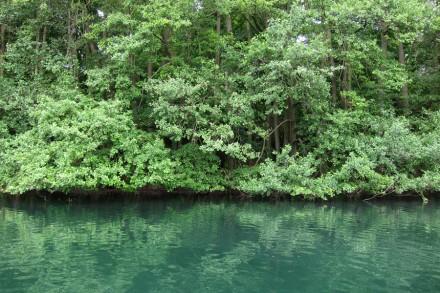 Fishing Trip : May 14, 2001