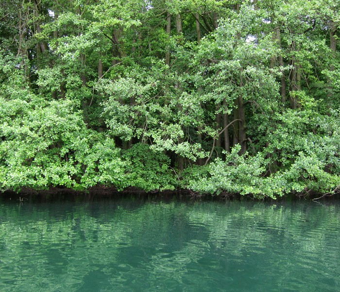 Fishing Trip : May 14, 2011