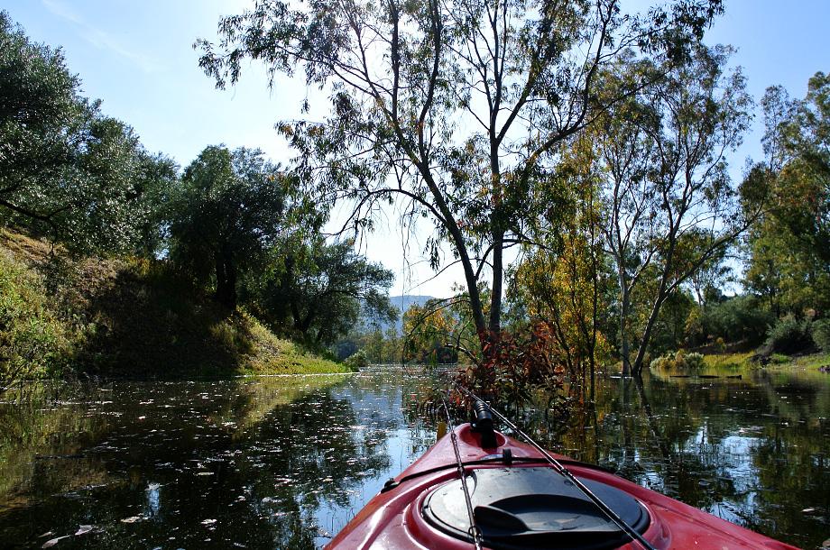 Kayaking Guadalmellato