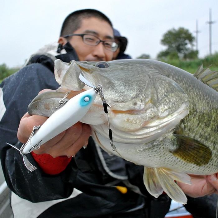 Biwako Bass