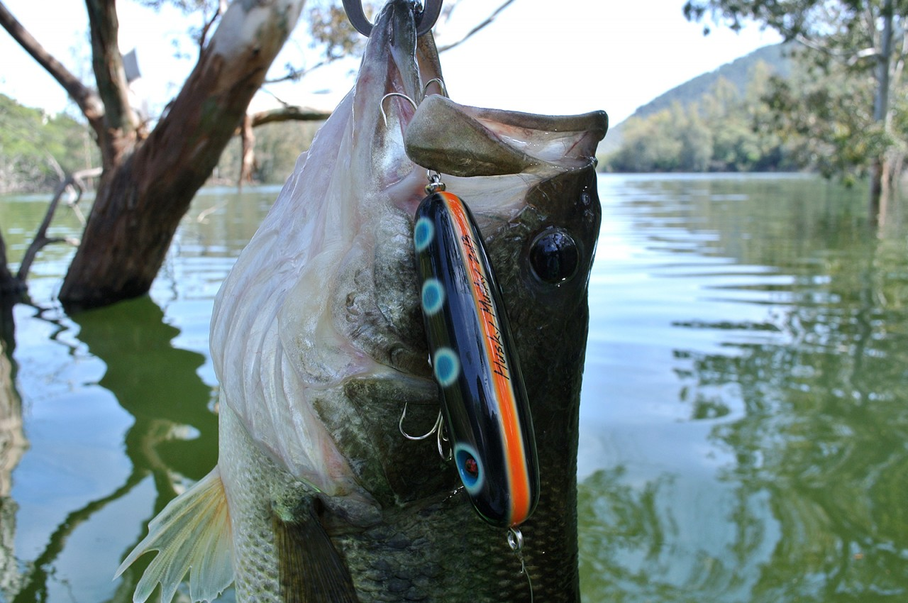 Handsome Lures