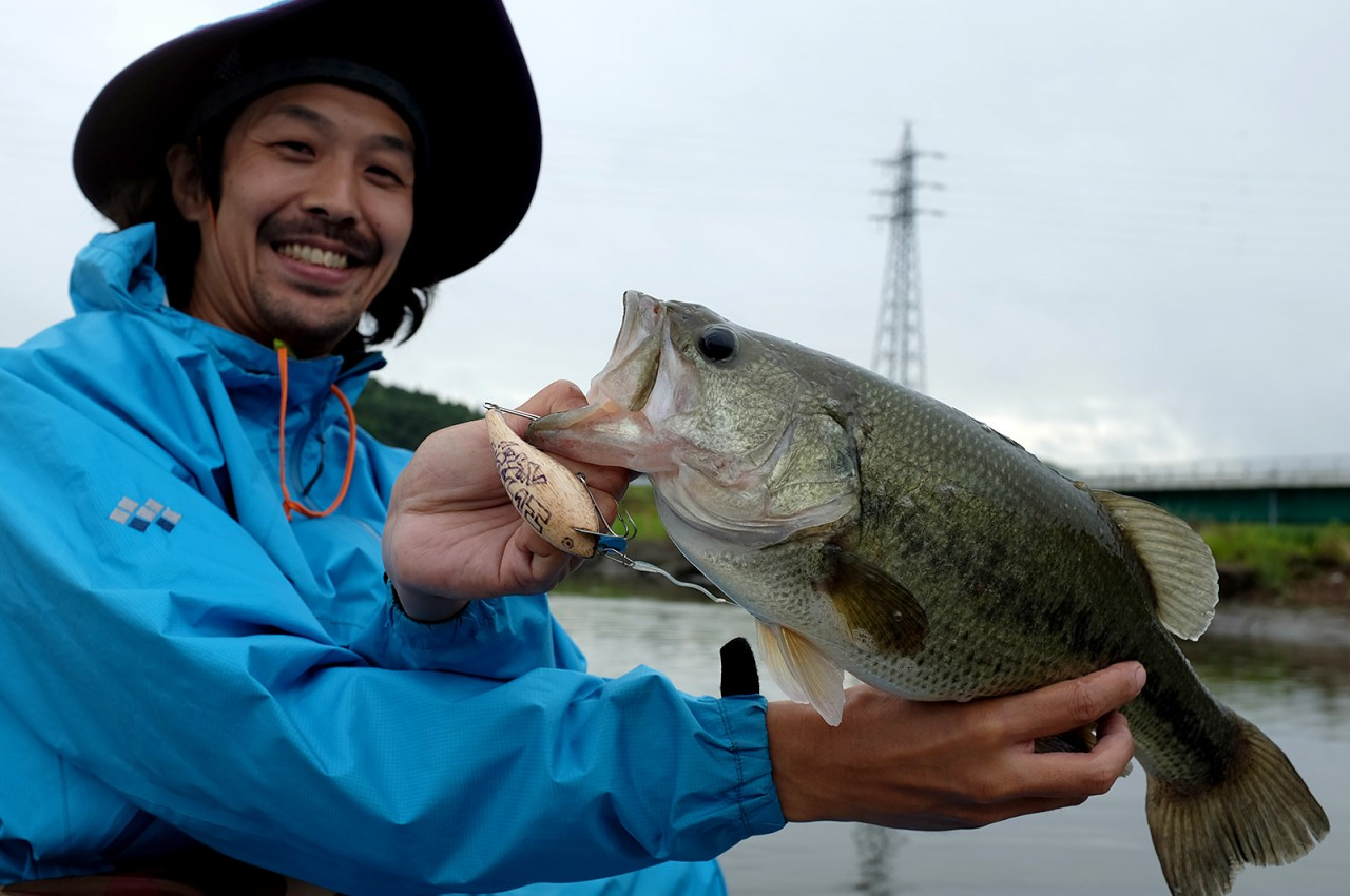 Inba River Bass