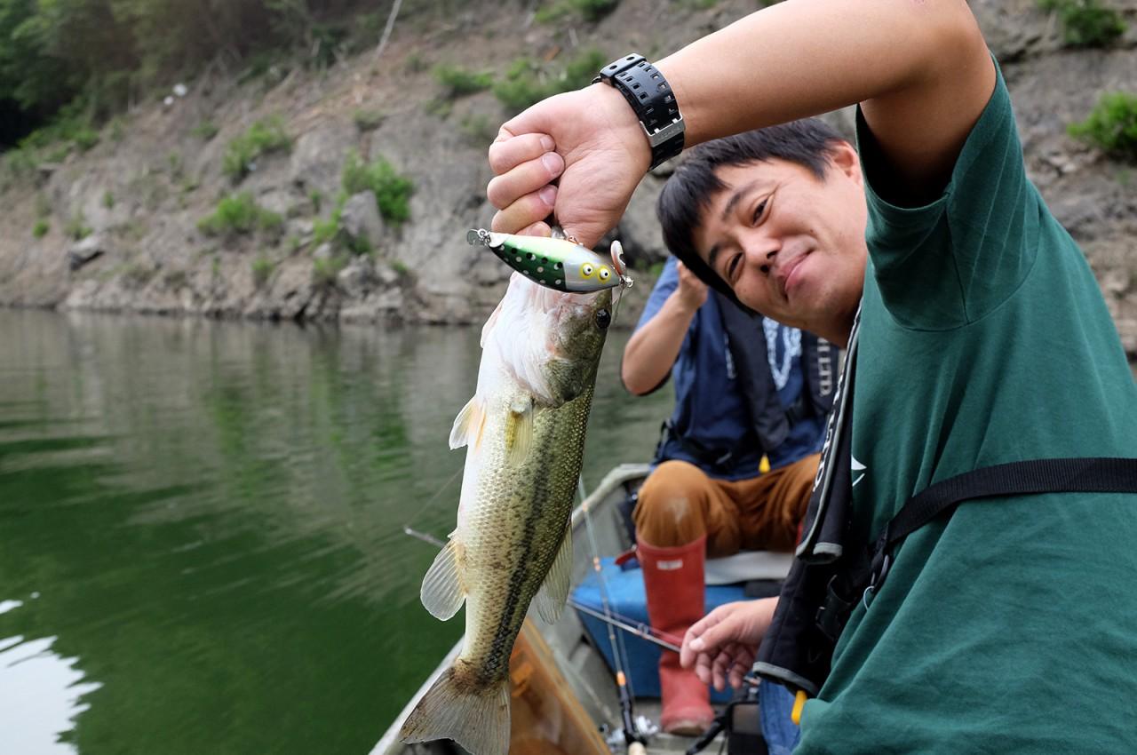 Tsubayama Dam Bass
